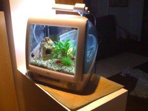Image d'un iMac G3 transformé en aquarium.